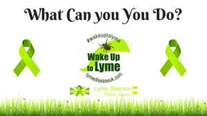 wake up to lyme what can you do
