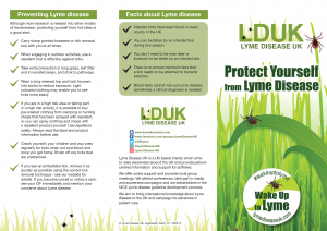 Wake Up To Lyme Flyer Front